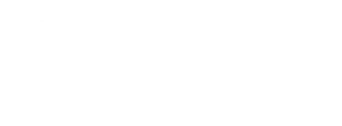 Summer Orchestra Luxembourg